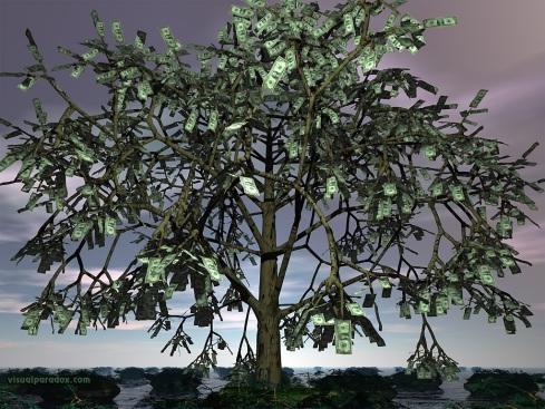 illas Cies - Página 4 Arvore-de-dinheiro